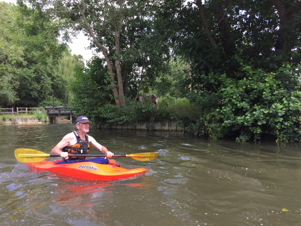 2016_July_RiverWey05