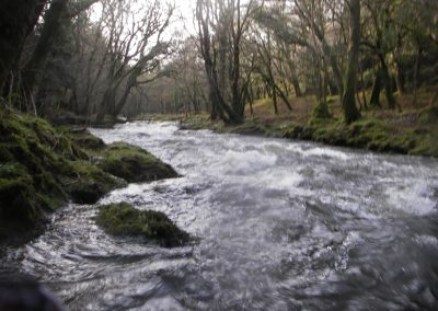 2006_dartmoor_28