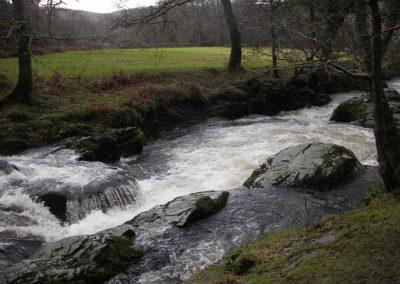 2006_dartmoor_39