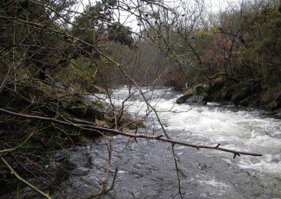 2007_dartmoor_039