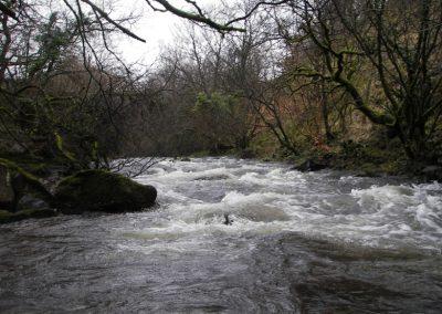 2007_dartmoor_041