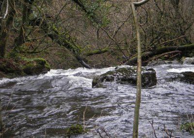 2007_dartmoor_060