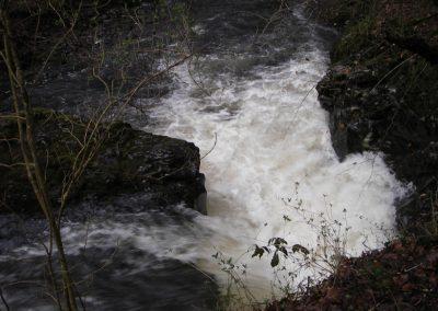 2007_dartmoor_070