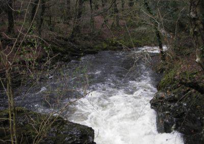 2007_dartmoor_071