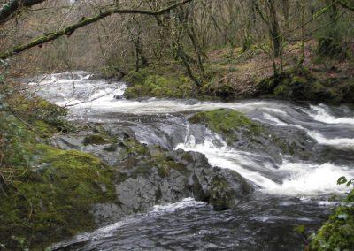 2007_dartmoor_077