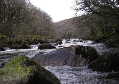 2007_dartmoor_104