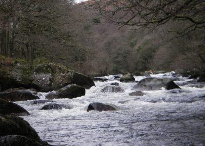 2007_dartmoor_106