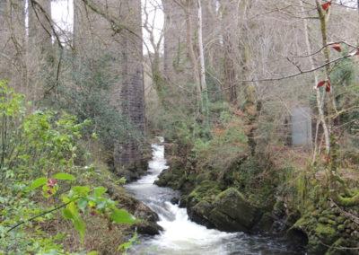 2014_Dartmoor_57